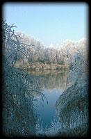 Téli Tisza Zsurknál